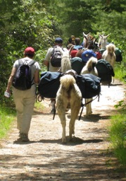 PLTA Mileage Program llamas hiking
