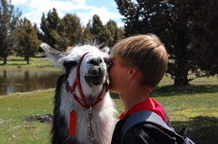 PLTA Pack Llama and Friend